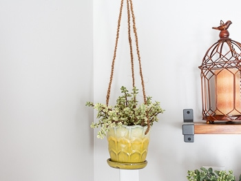 How to turn any pot into a hanging planter