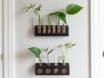 How to make a propagation station