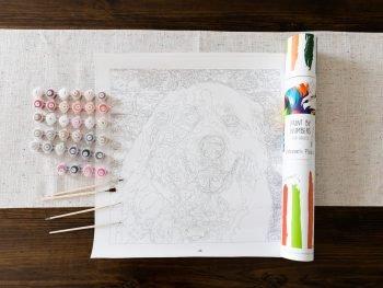 Custom Paint by numbers kit